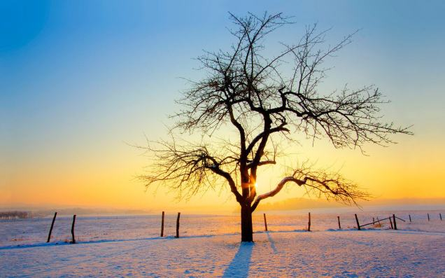 winter-sunrise-landscape-23310-wallpapers-scenery